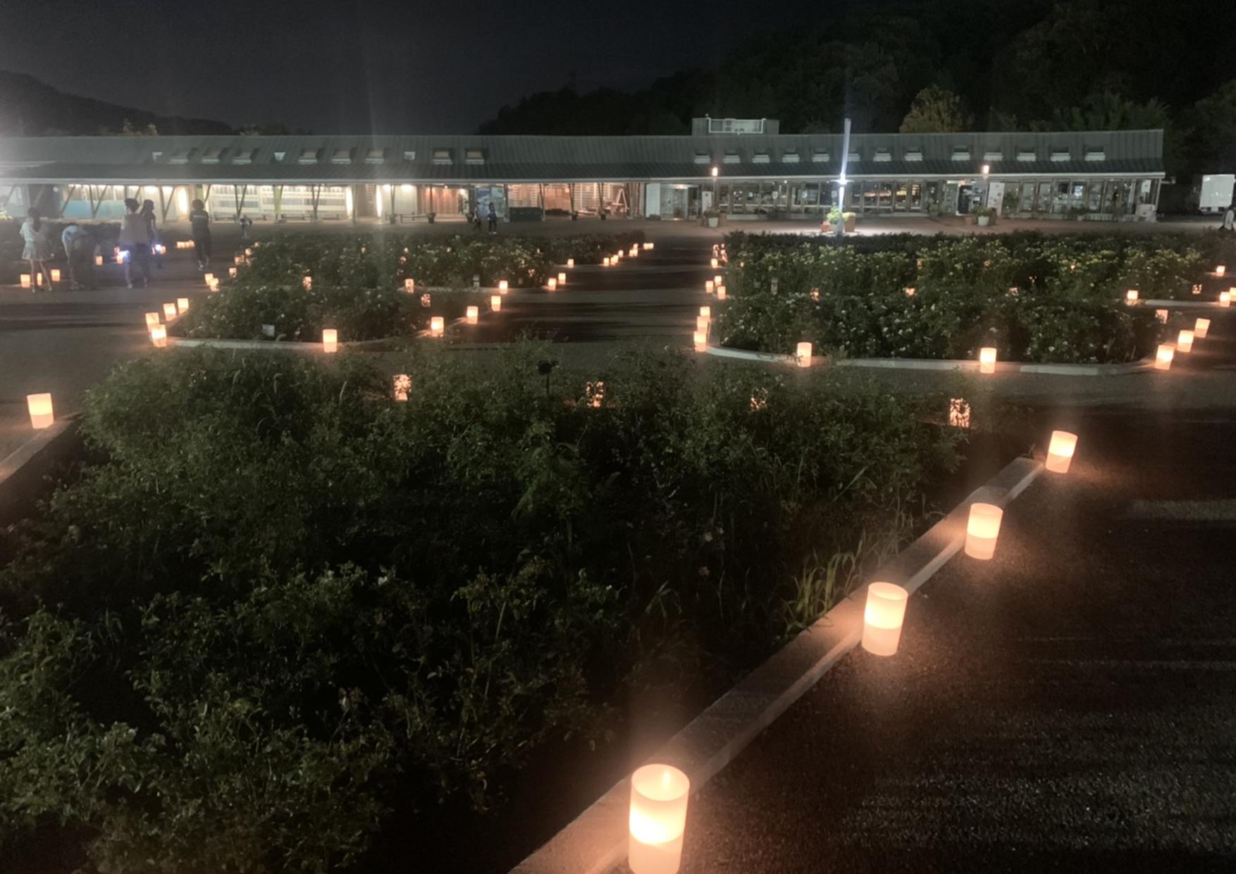 花フェスタ記念公園ウエルカムガーデン
